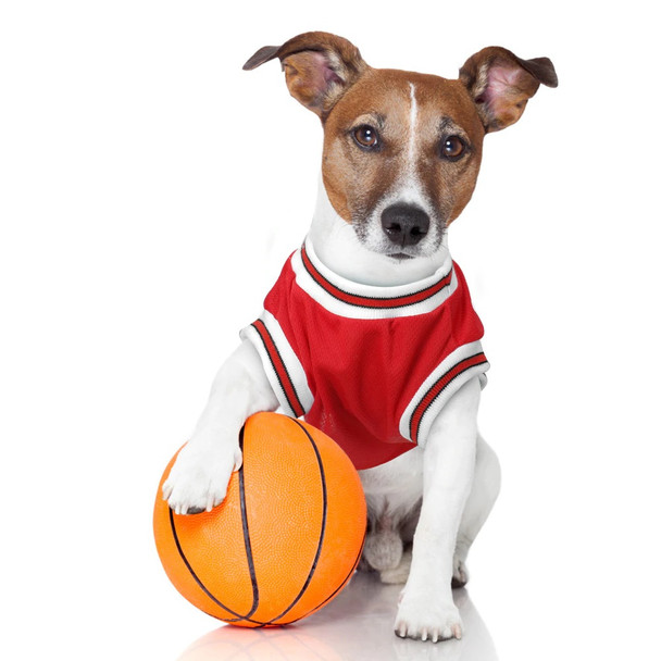 Red Dog Basketball Vest