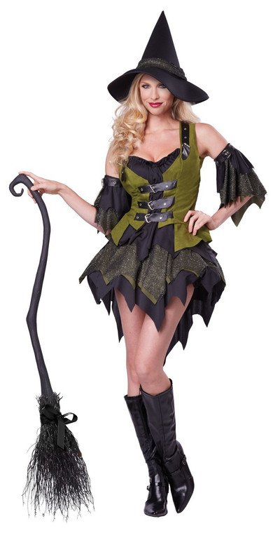 Bewitching Babe Witch Costume