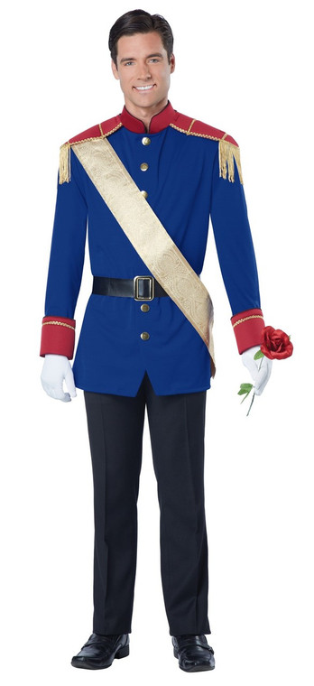 Storybook Prince Adult Costume