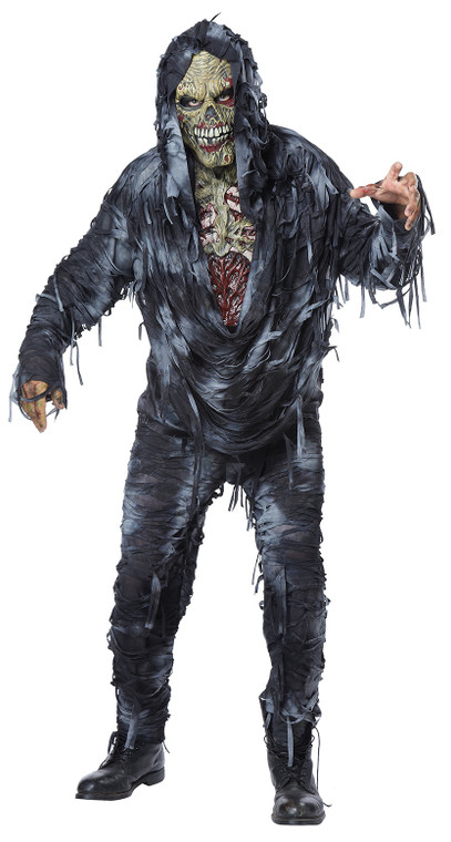 Rotten To The Core Mens Costume