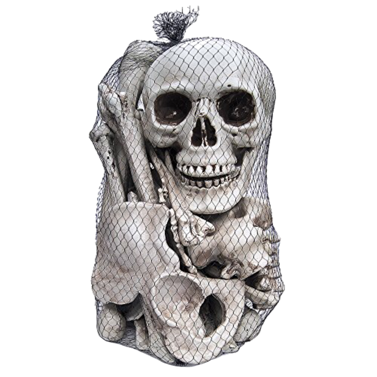 Skeleton Bag Of Bones