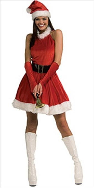 Santa's Inspiration Costume
