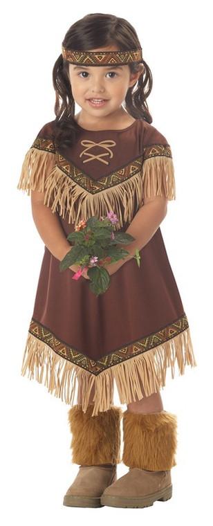 Lil Indian Princess Toddler Costume