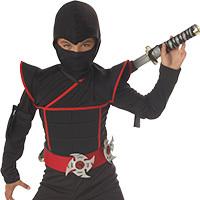 Ninja Costumes