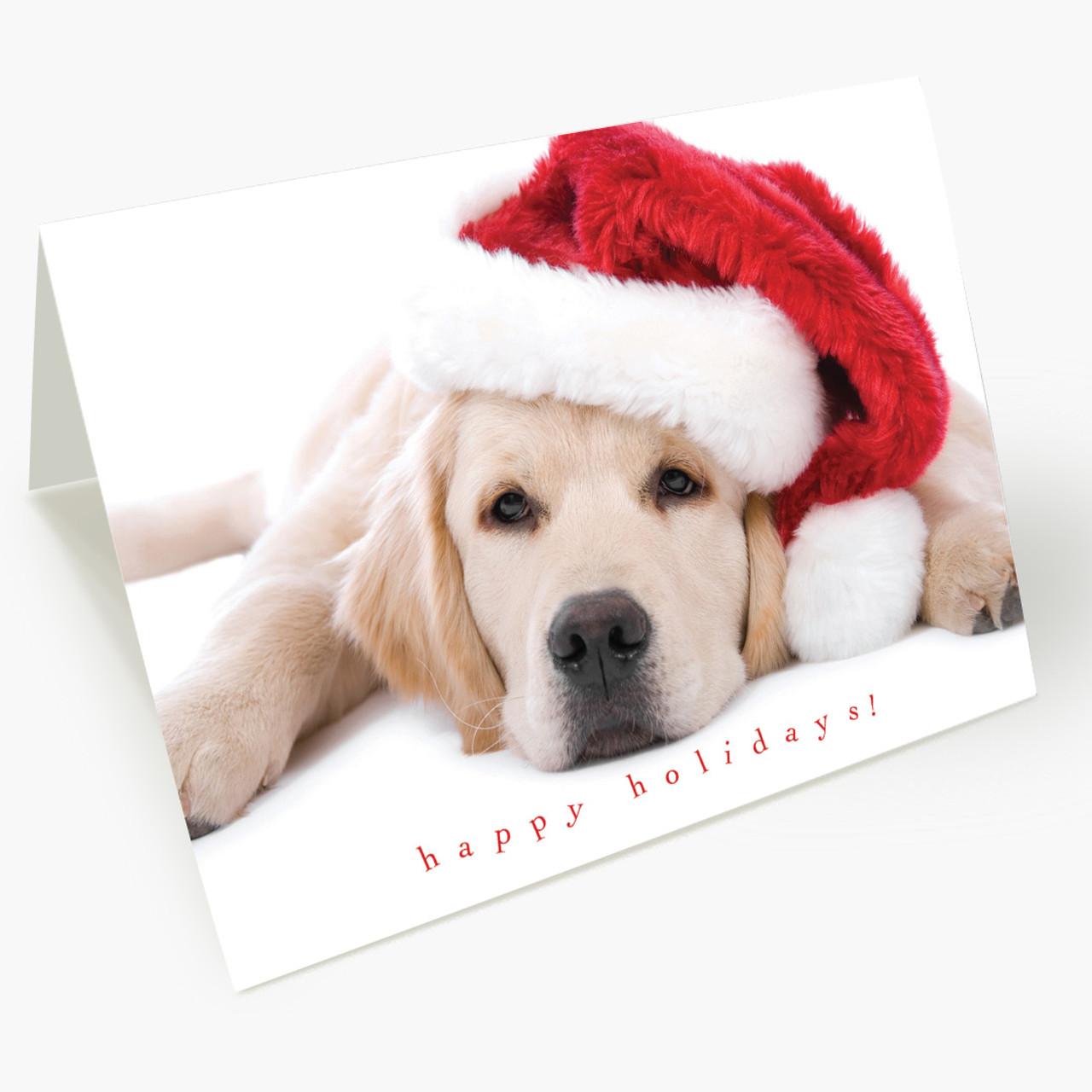 Santa Puppy Christmas Card