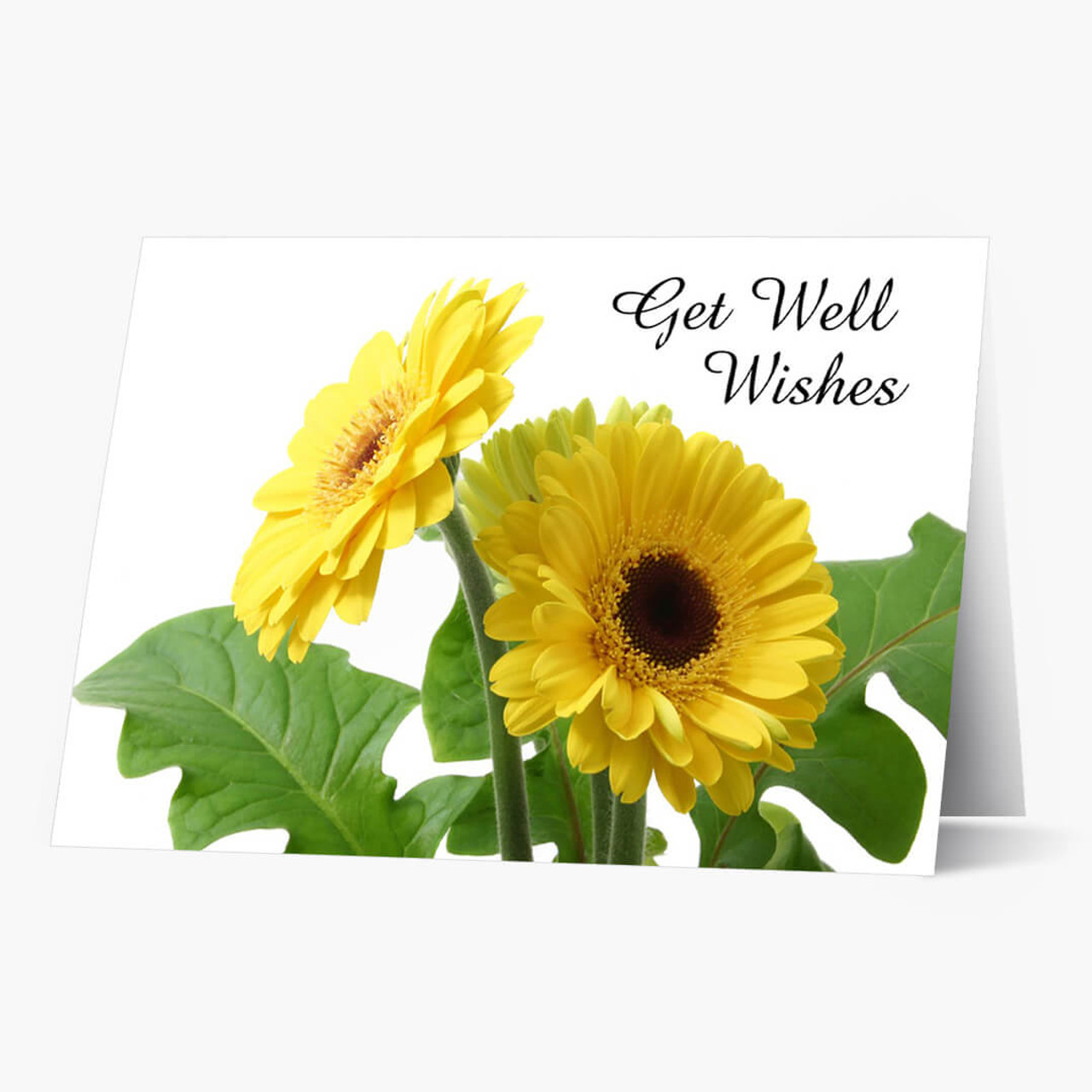 Yellow Daisy Get Well Card
