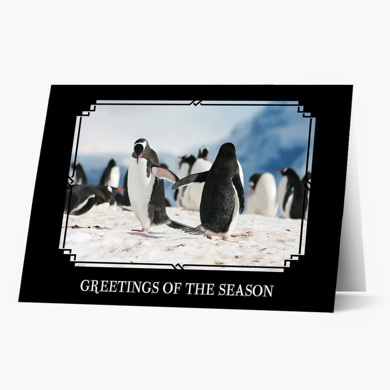 Friendly Flipper Greetings Christmas Card