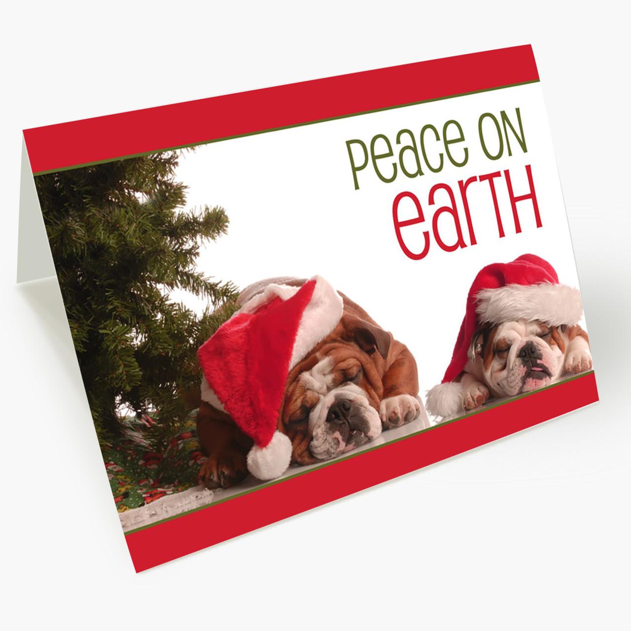 Peaceful Bulldogs Christmas Card
