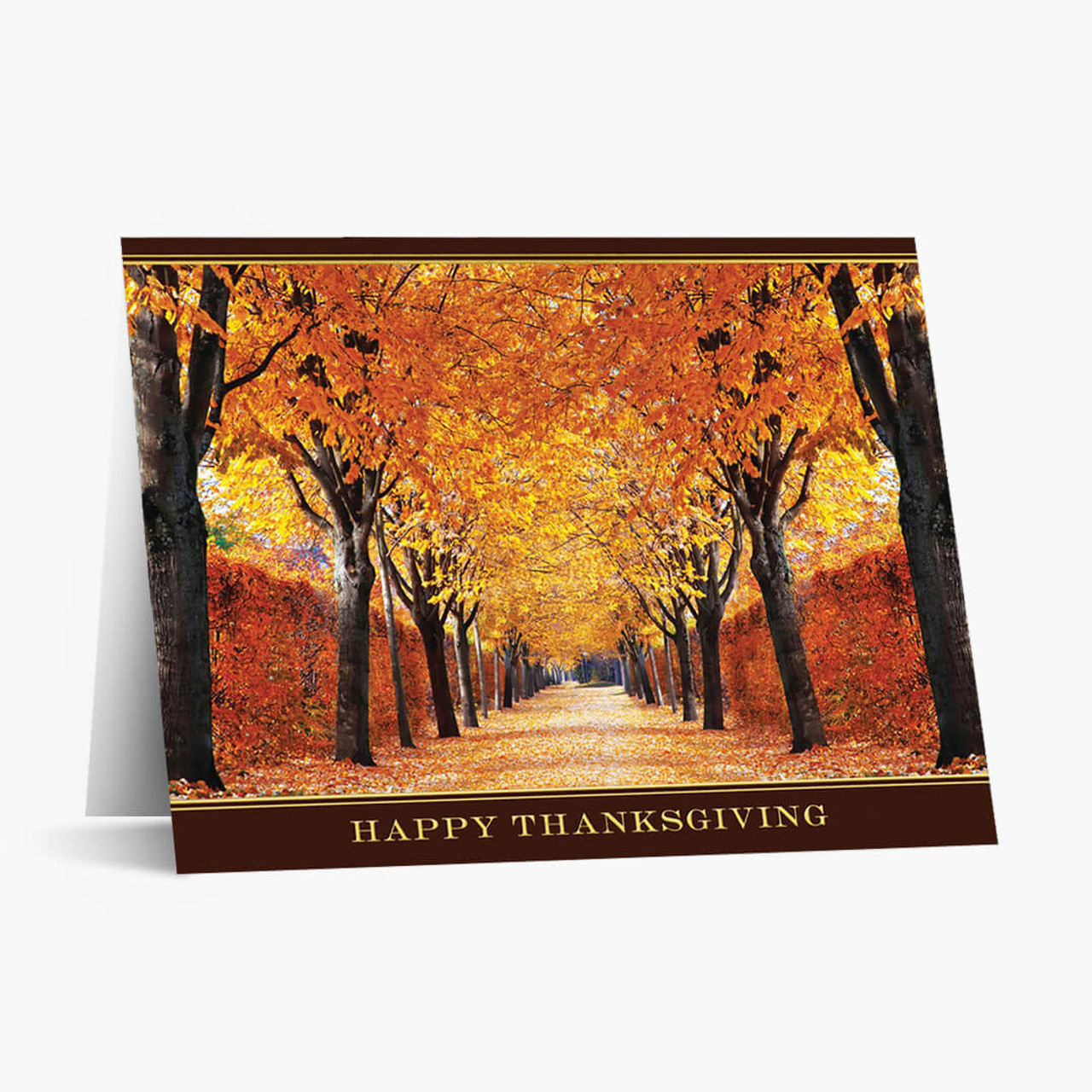 Brilliant Path Thanksgiving Card