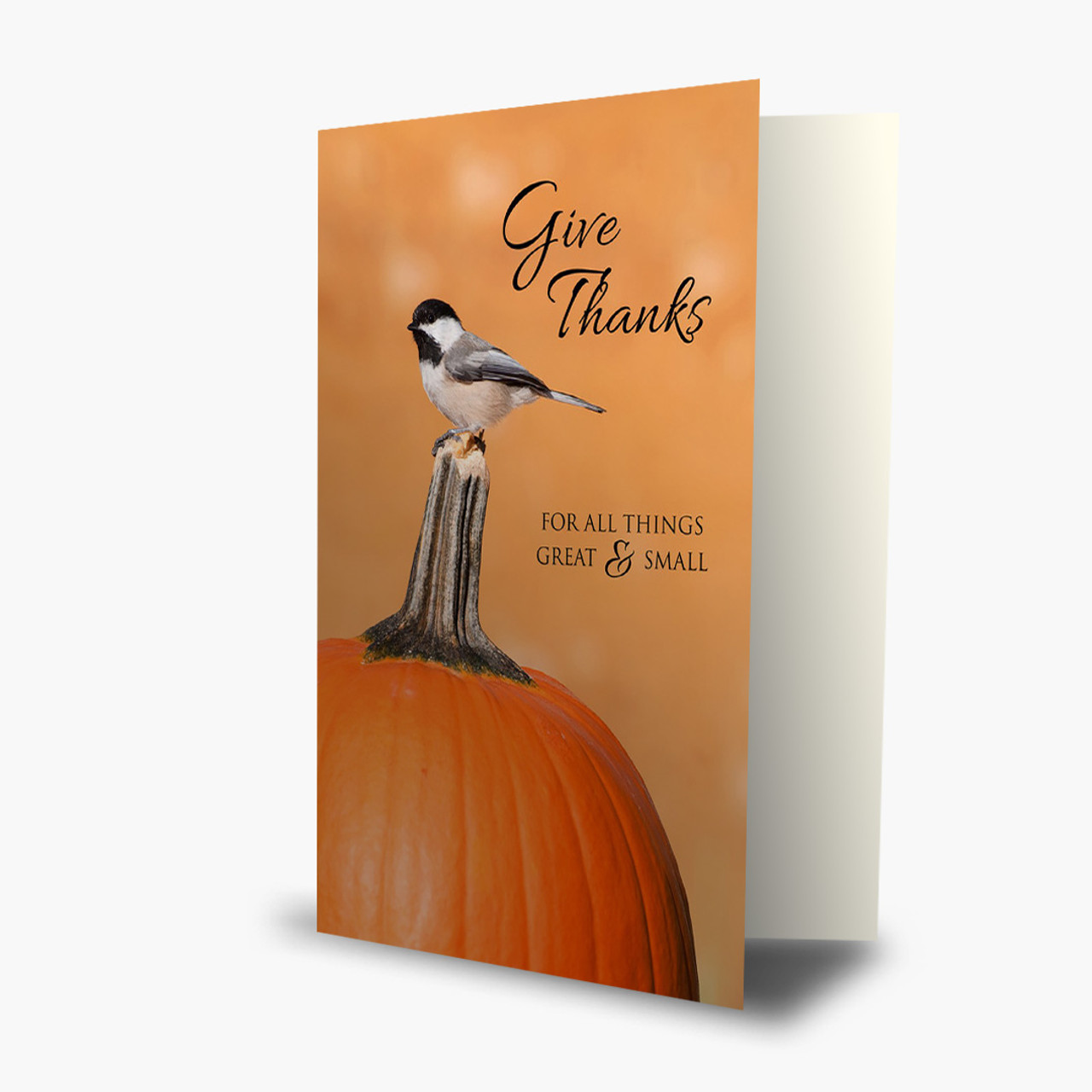Great and Small Thanksgiving Card