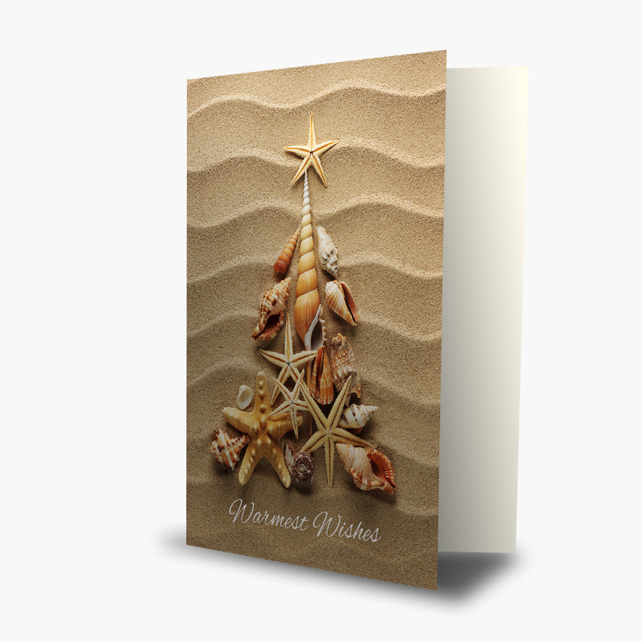 Beach Shell Wishes Christmas Card