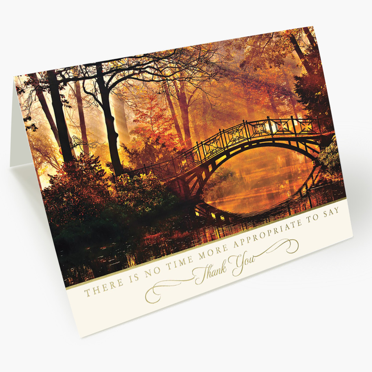 Thank You Brilliance Thanksgiving Card