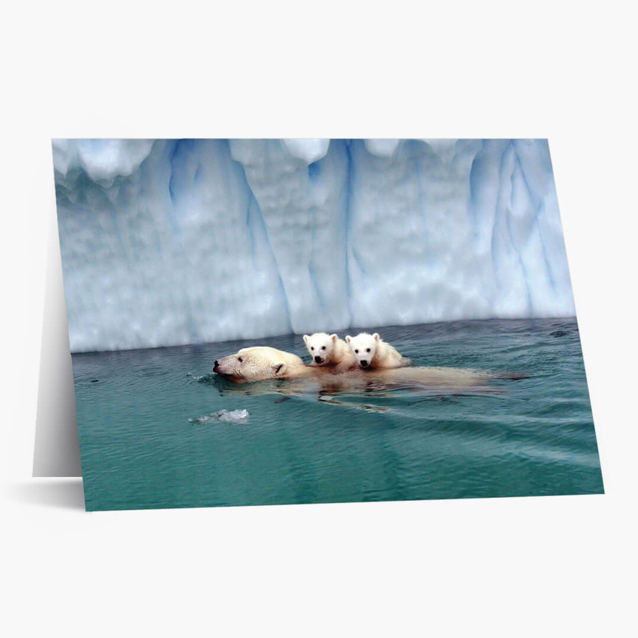 Soothing Swim Christmas Card