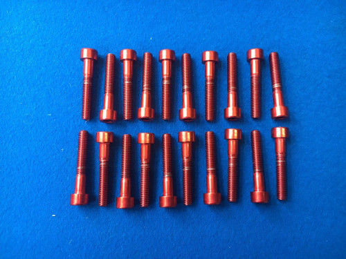 RS Cosworth Stainless Steel Cam Cover Bolts x 20 In Red