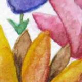 Watercolor Practice | Showcasing Flower Bouquet