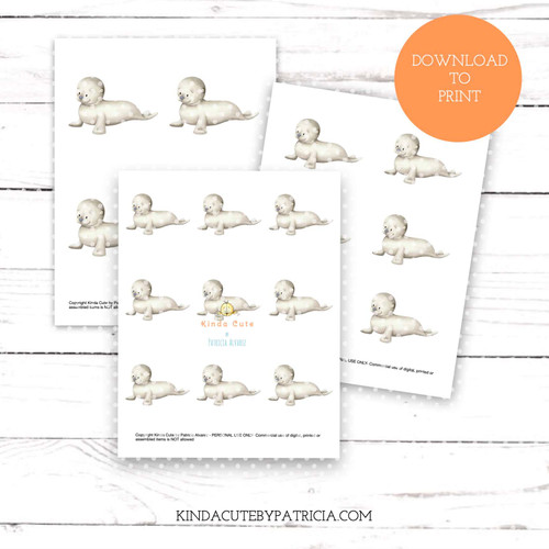 Baby Seal colored printable pages