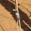 RATTLER Magic Loop Breakaway Honda (MAGICLOOP)