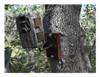 BROWNING Trail Camera Tree Mount (BTC TM)