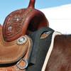 CLASSIC EQUINE Saddle Shims (CESSHIMS)