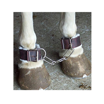 INTREPID INTERNATIONAL Fleece Lined Leather Horse Hobbles (4636L)