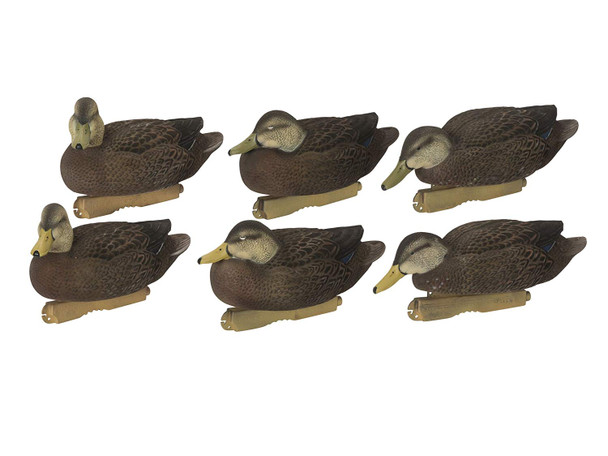 AVERY Pro Grade FFD Black Ducks Harvester Pack Decoys (74109)