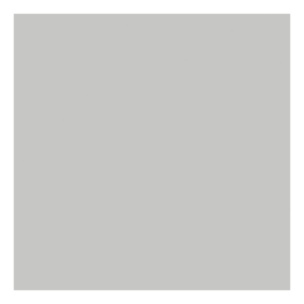 SAVAGE UNIVERSAL 86in x 12Yd Widetone Gray Tint Seamless Paper (57-86)