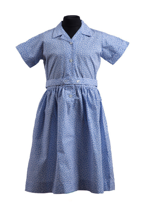 Derwent Lodge dress (65241)