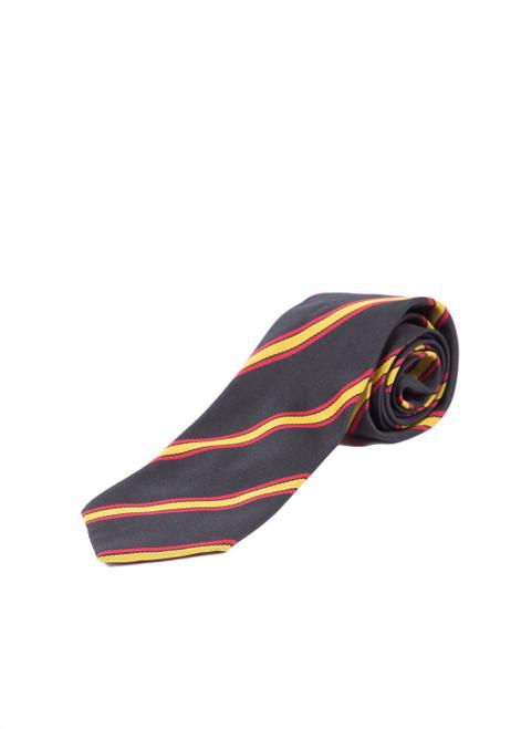 TWGSB tie (46531)