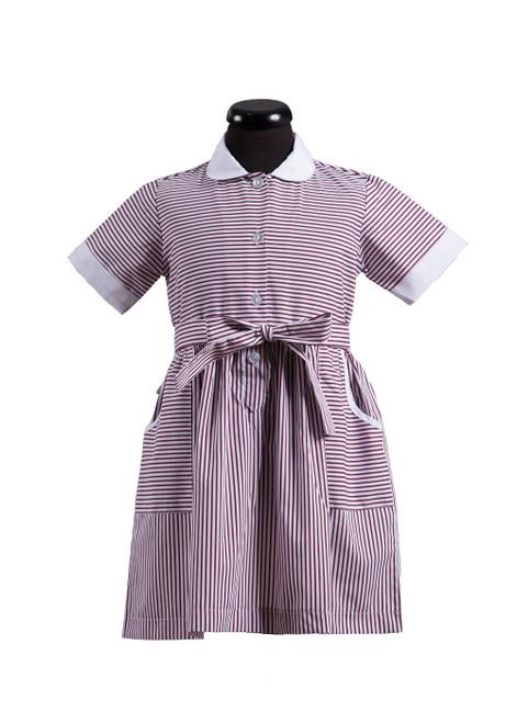 Battle Abbey Prep school summer dress (65292)