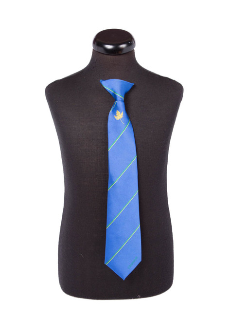 Chartwell House tie - yr 7 & 8 (46179)