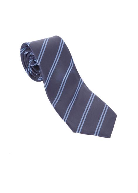 Ashton house tie - long - Year 3 to 8  (45352)
