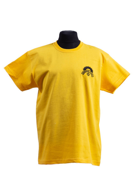 Newbridge Junior School yellow t-shirt (42162)