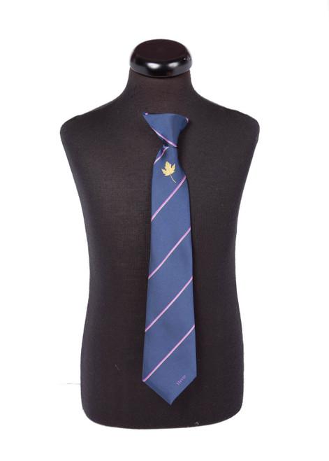 Hever House tie - yrs 9, 10 & 11 (46181)