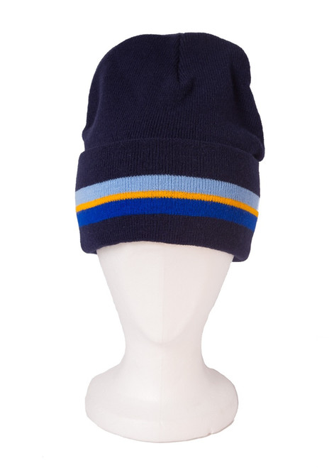 The Mead School ski hat (31191)