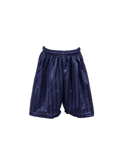Navy shadow striped PE shorts (79103)