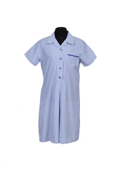 Lingfield College Prep dress (65005)