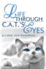 Life Through C.A.T.'s Eyes