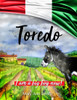 Toredo - eBook