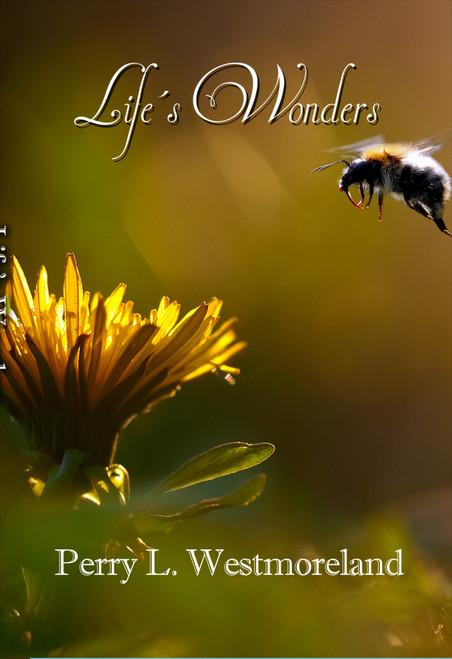 Life's Wonders - eBook