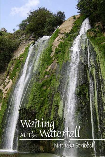 Waiting at the Waterfall
