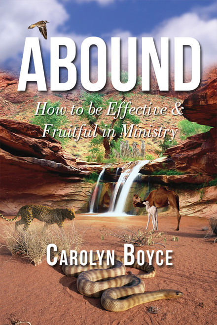 Abound: How to be Effective & Fruitful in Ministry