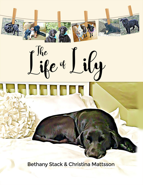The Life of Lily