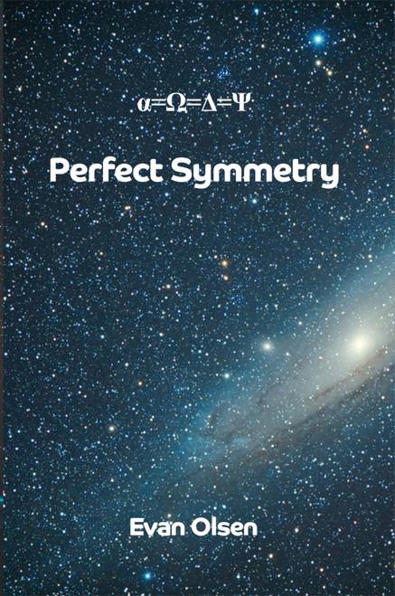 Perfect Symmetry - eBook