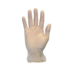 General Purpose Vinyl Gloves, Powder-Free, Clear, 3 3/5 mil, 1000/Carton