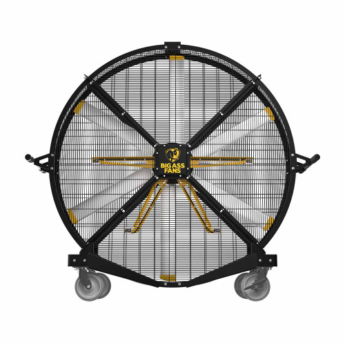 Black Jack Fan with Ion Technology