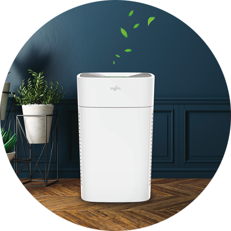 Zogics Air Quality Solutions