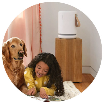 Molekule - home air purifiers