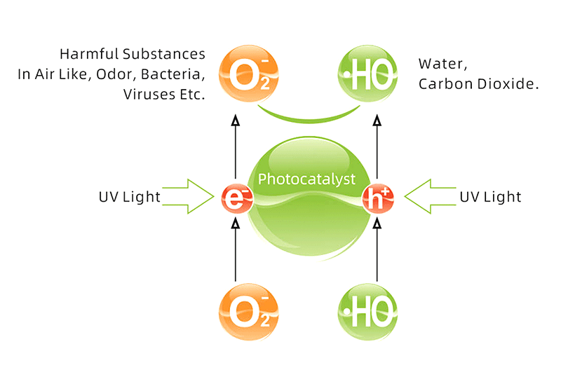 Graphic that shows how UV disinfection works