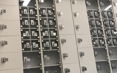 Zogics Cell Phone Lockers