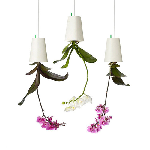 Hanging Plant Pot Flower Pots